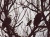 eagles-jpg